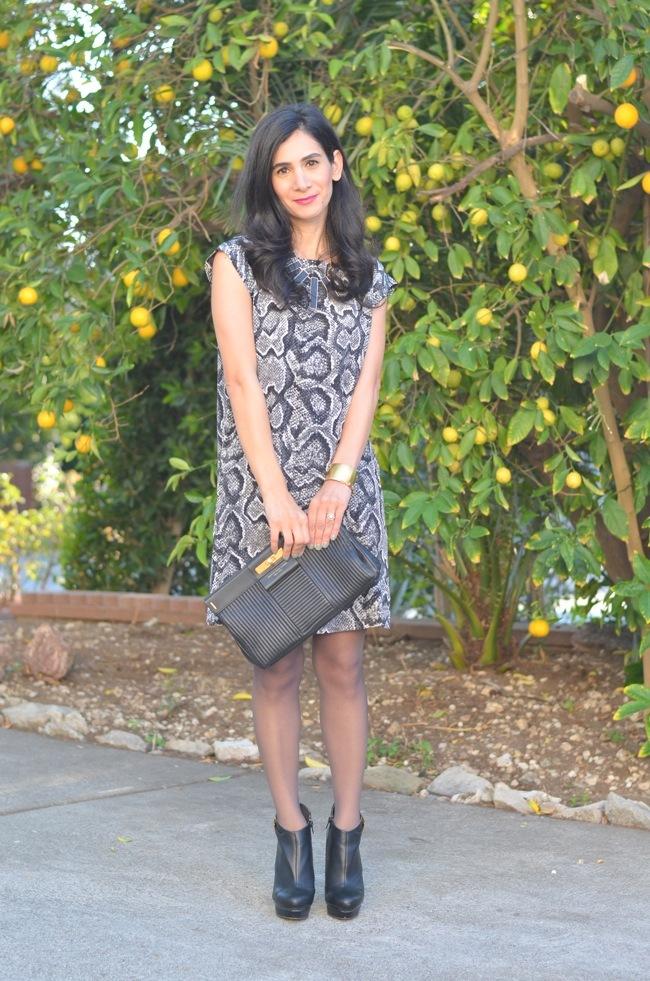 joie dress 1