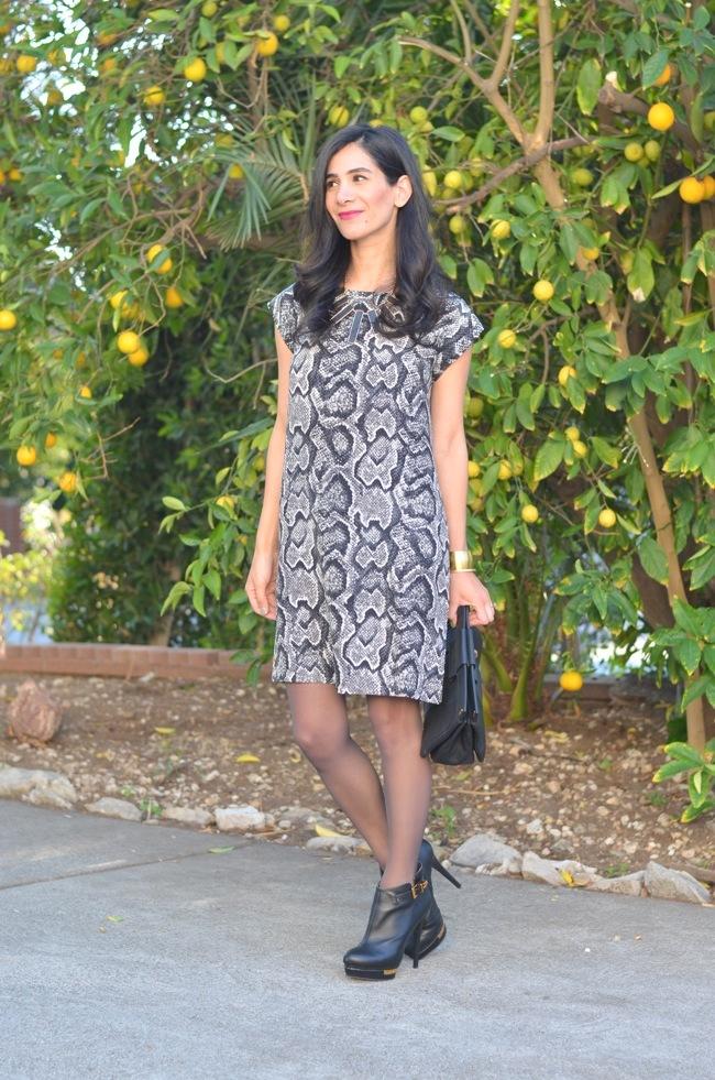 joie dress 3