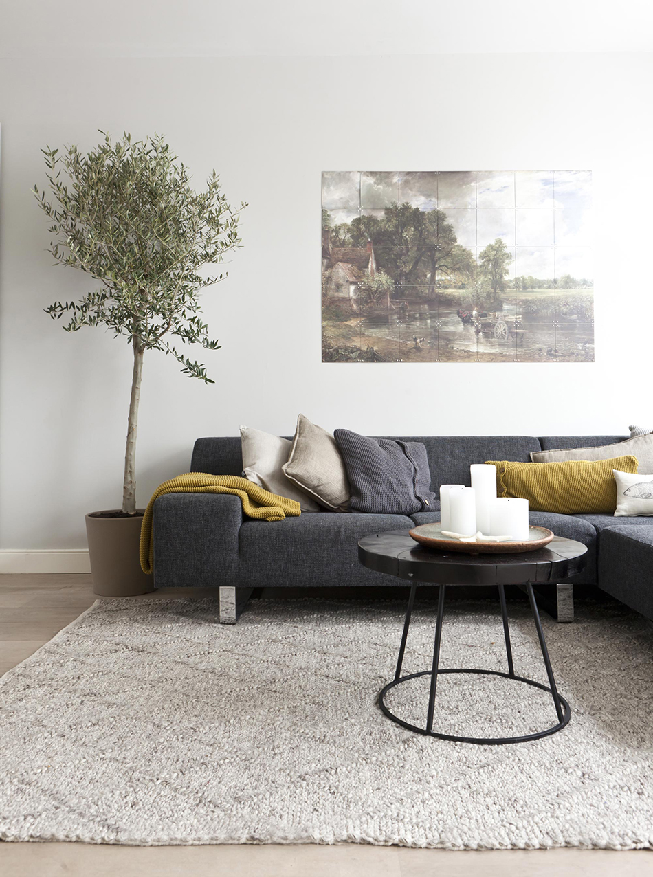 Indoor olive trees for Interieur woonkamer modern