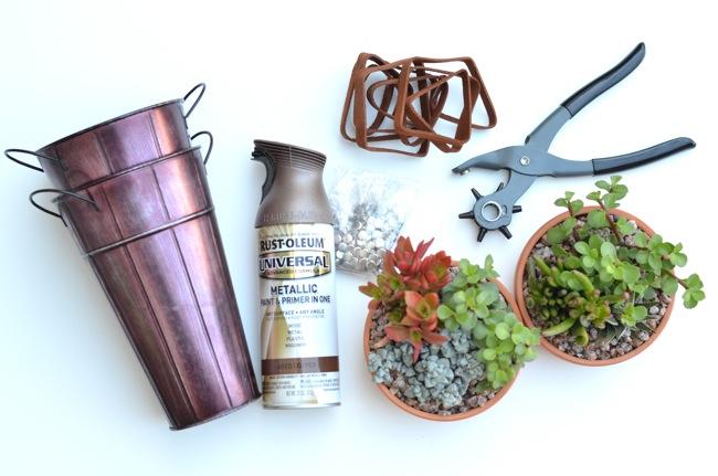 HANGING PLANTS DIY