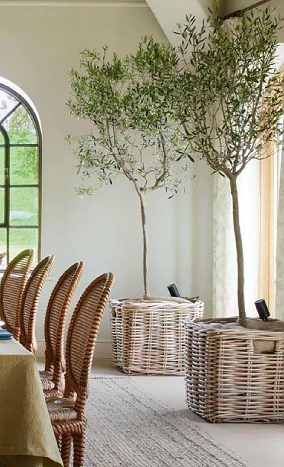 olive-trees-dining-room